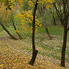 Autumn in Tsaritsino